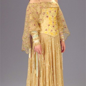 Starwars Padme Amidala gown idea for a wedding