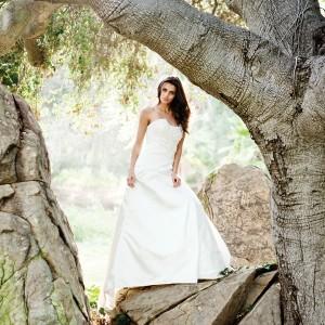 tia bridal gowns benjamin roberts