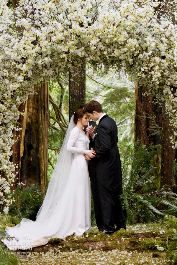 twilight wedding dress -- bella swan's wedding gown in breaking dawn