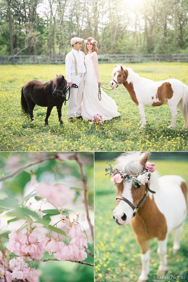 sareh nouri wedding dress anthropologie themed shoot kay english photography mini horse pony dog