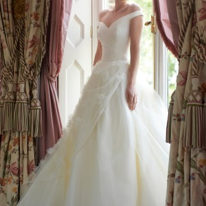 stephanie allin 2014 daisy wedding dress ball gown straps