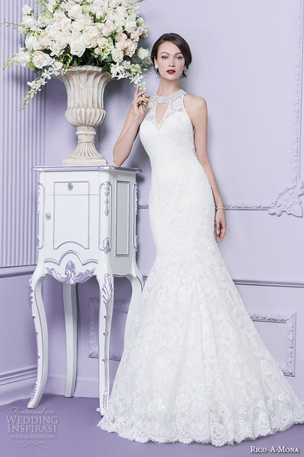 Rico A Mona 2015 Wedding Dresses Parisian Blush Bridal