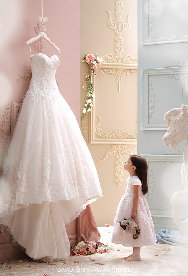 david tutera mon cheri spring 2015 style 115241 lucien strapless ball gown wedding dress corded lace scalloped sweetheart neckline ivory tearose color
