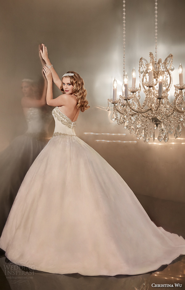 christina wu wedding dresses 2015 strapless sweetheart neckline embroidered pretty ball gown wedding dress 15570 back view