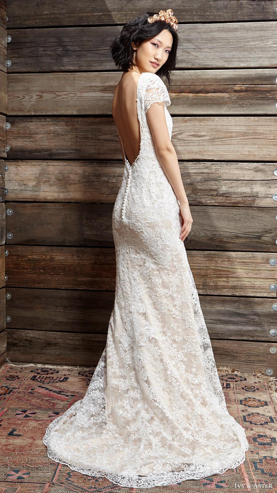 ivy aster bridal spring 2017 cap sleeves jewel neck lace wedding dress (sylvia) sv scoop back