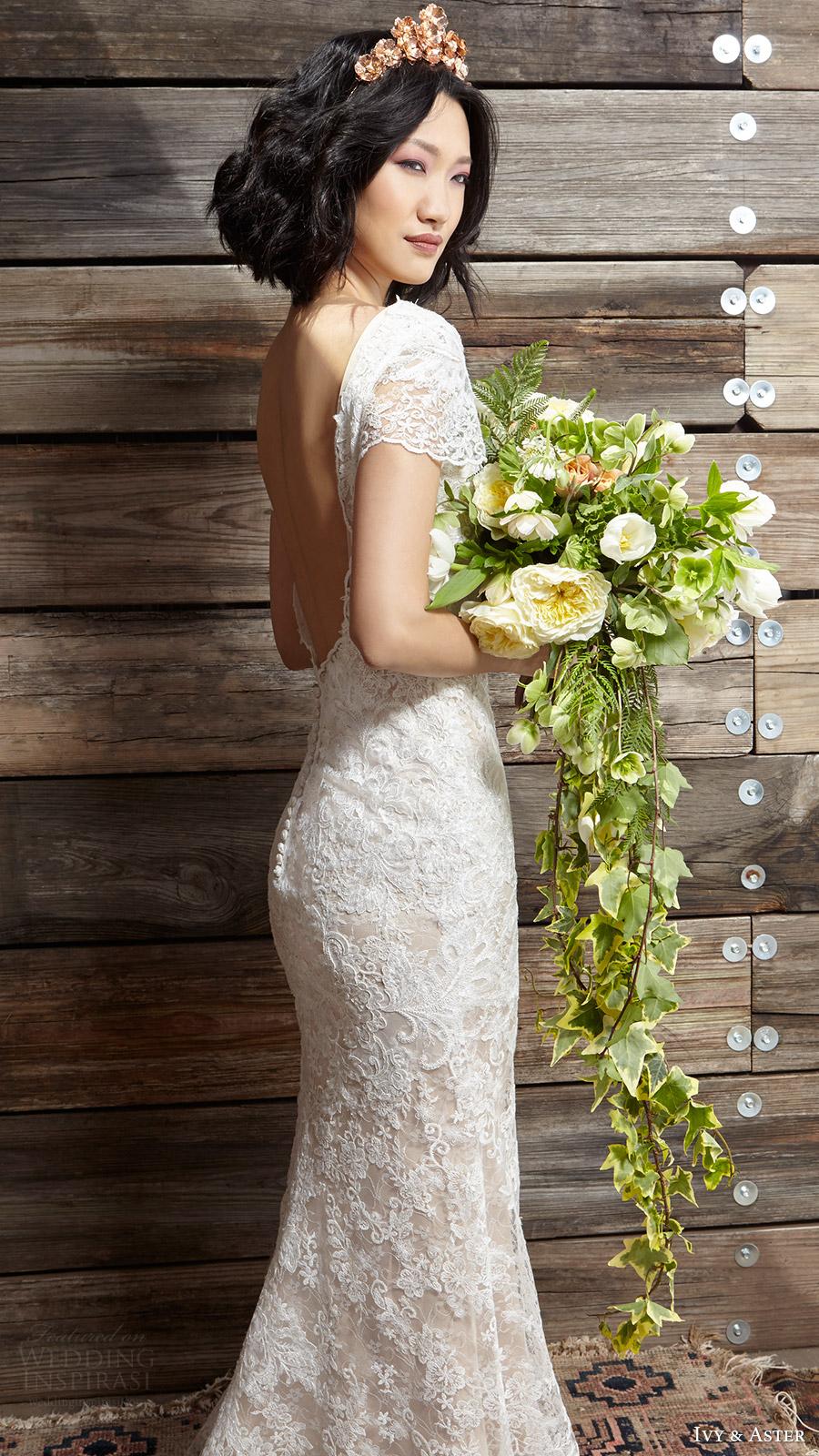 ivy aster bridal spring 2017 cap sleeves jewel neck lace wedding dress (sylvia) zsv scoop back