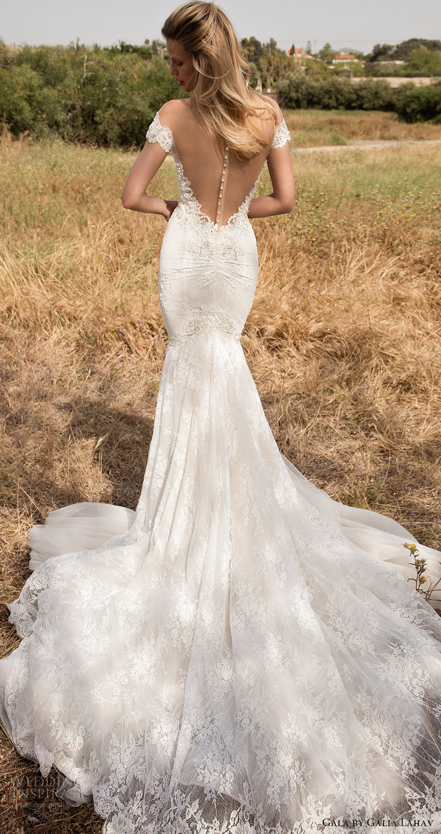 gala galia lahav spring 2017 illusion off shoulder cap sleeves deep vneck mermaid wedding dress (702) bv illusion low back train