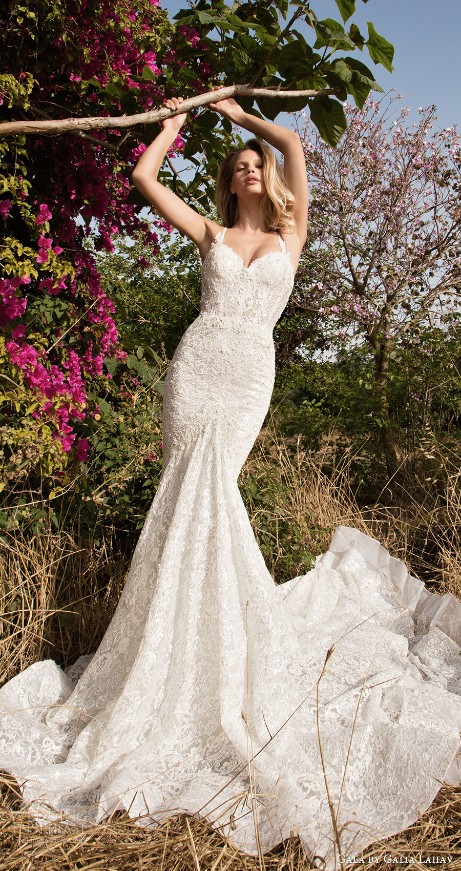 gala galia lahav spring 2017 sleeveless sweetheart lace straps mermaid lace wedding dress (707) mv train