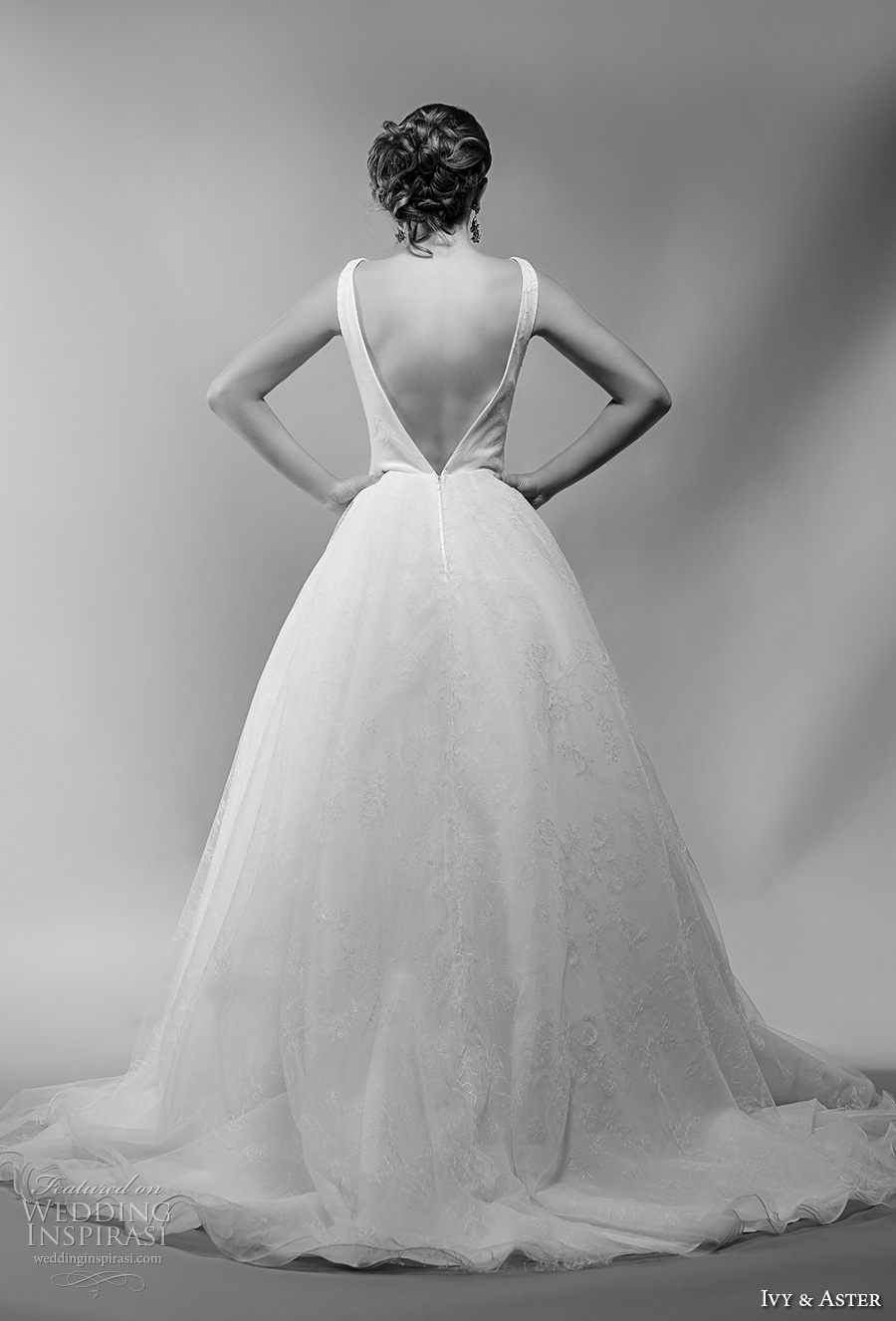 ivy and aster spring 2018 bridal sleeveless deep v neck lightly embellished bodice princess ball gown wedding dress open v back chapel train (martine) bv