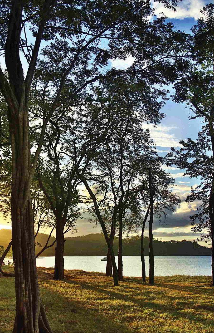 el mangroove guanacaste costa rica honeymoon destination wedding venue panama beach forest sunset