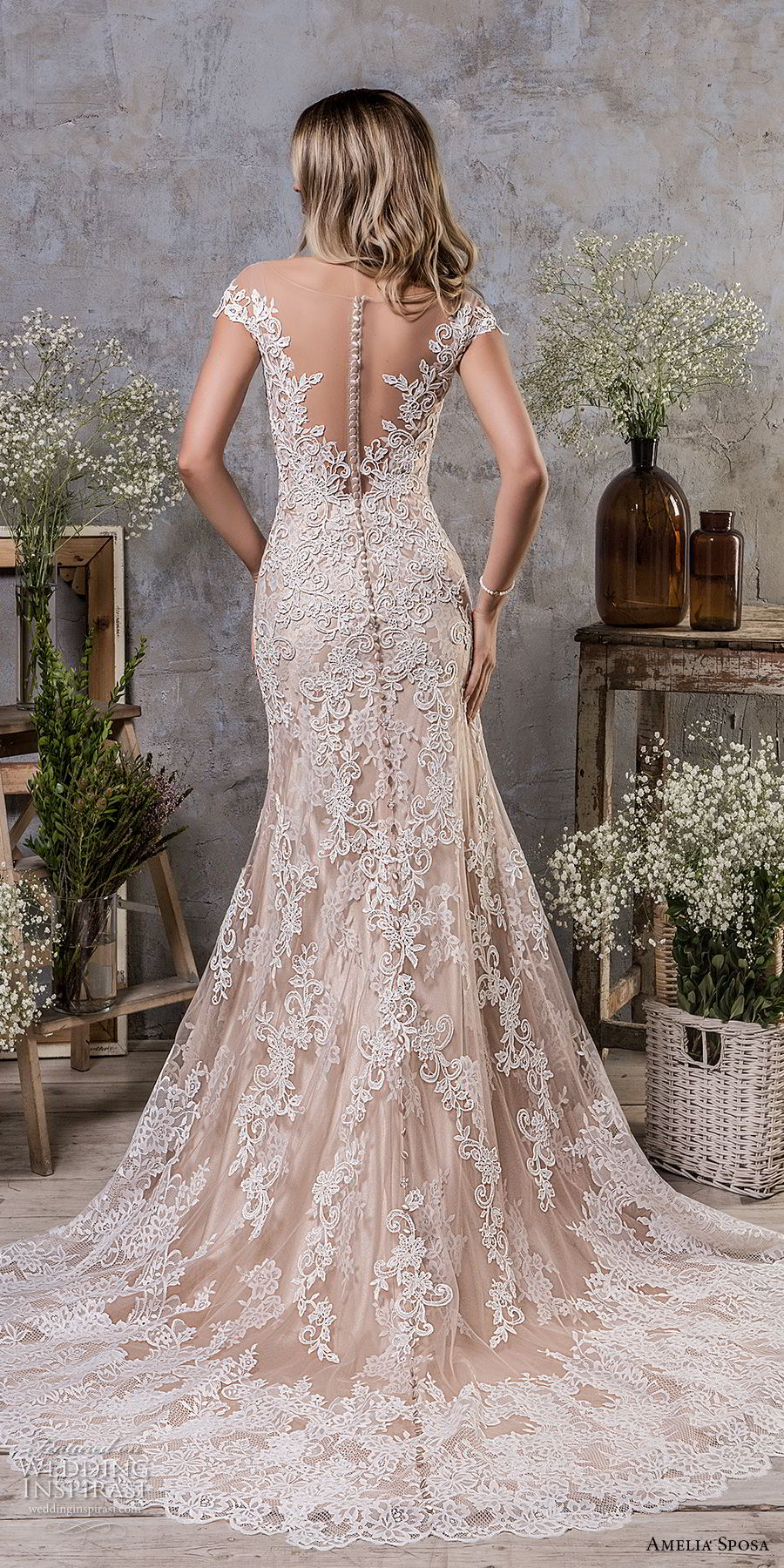 amelia sposa fall 2018 bridal cap sleeves illusion bateau sweetheart neckline full embellishment champagne color a line wedding dress sheer button back medium train (5) bv