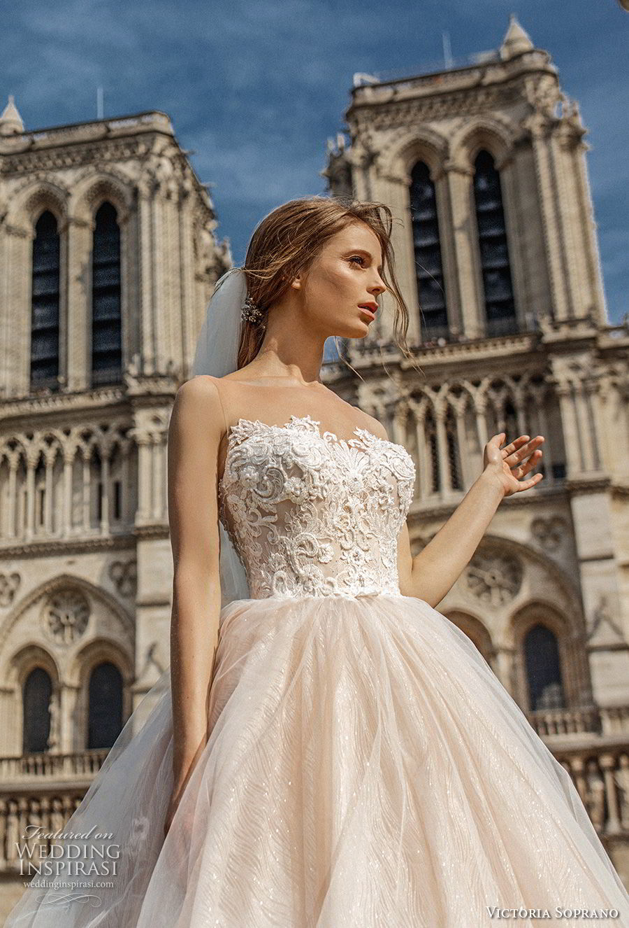 victoria soprano 2019 bridal sleeveless illusion bateau sweetheart neckline princess blush ball gown wedding dress chapel train (15) zv
