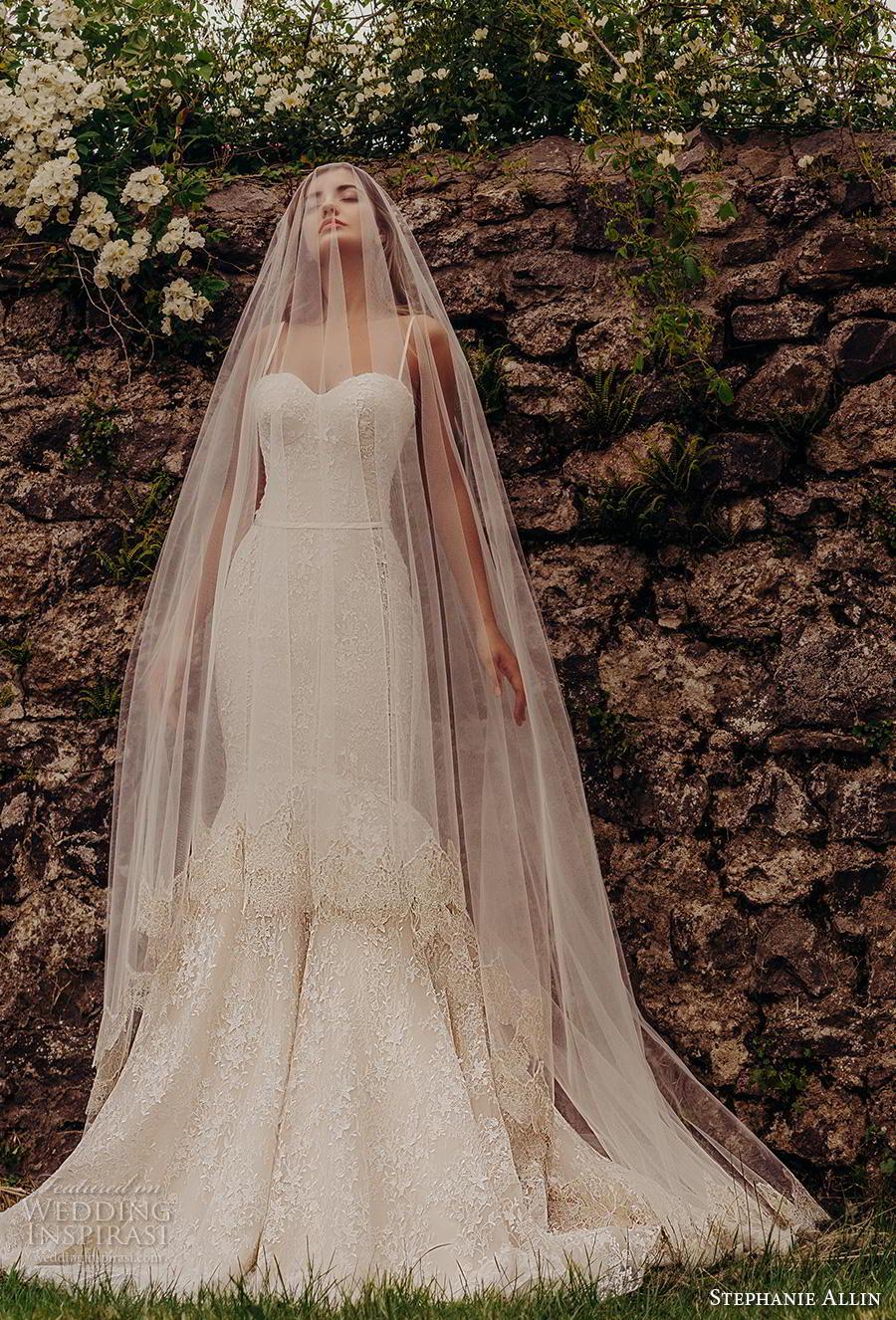 stephanie allin 2019 bridal sleeveless spaghetti strap sweetheart neckline full embellishment bustier sexy elegant blush mermaid wedding dress mid back chapel train (7) mv
