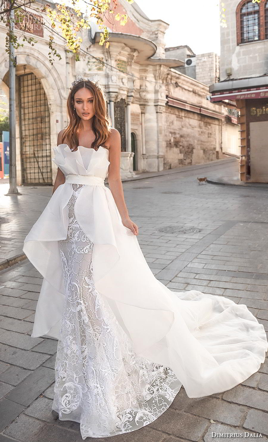 dimitrius dalia 2019 bridal strapless crumb catcher neckline full embellishment fit and flare wedding dress a  line overskirt chapel train (4) mv