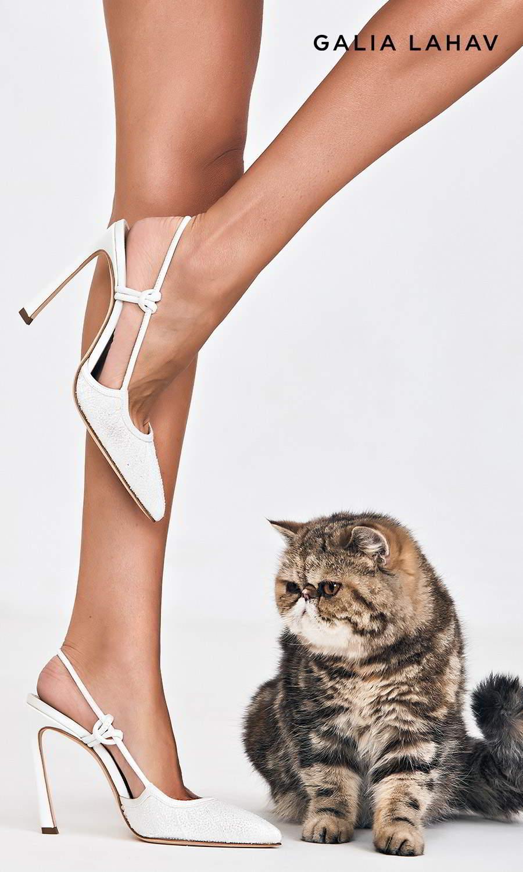 galia lahav shoes fall 2021 bridal rhinestone beaded slingback pointed toe high heel pump shoes (astrid white) sv